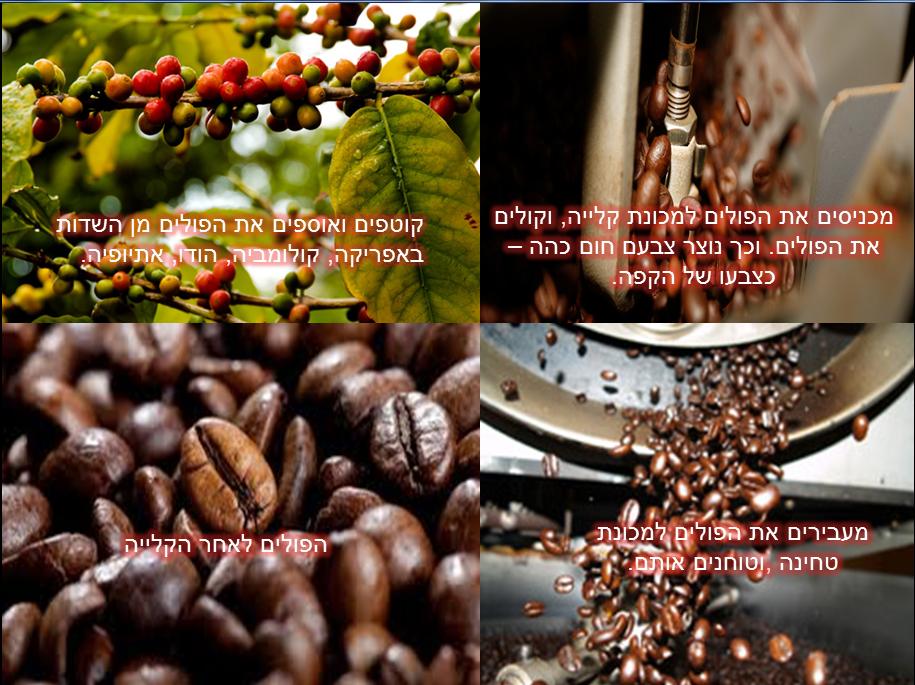 פוסט קפה 2